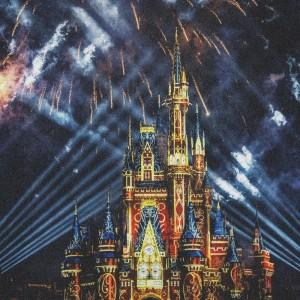 Album Mad at Disney from Kae-Dama