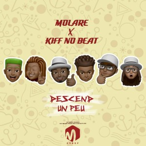 Album Descend un peu from Kiff No Beat