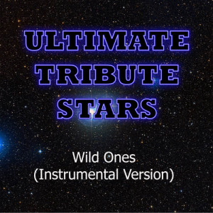 Ultimate Tribute Stars的專輯Flo Rida feat. Sia - Wild Ones (Instrumental Version)