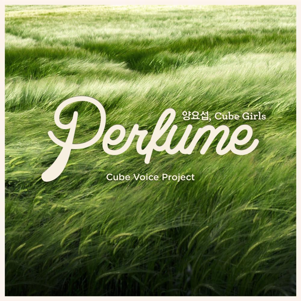 Perfume 2013 Yang Yoseob (Highlight); Cube Girls