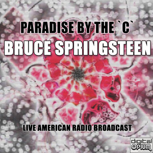 Album Paradise By The `C` from Bruce Springsteen