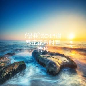 謝春花的專輯(借我)2019謝春花花樂時宣傳片