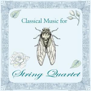 Shockwave-Sound的專輯古典音樂花房:弦樂之聲