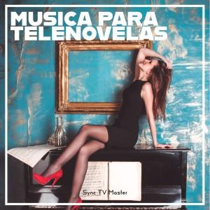 Album Musica para Telenovelas from Sync TV Master