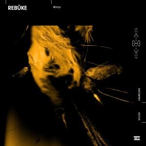 Album Wasp from Rebuke