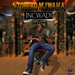 Album Incwadi from Ntobeko Mjwaha