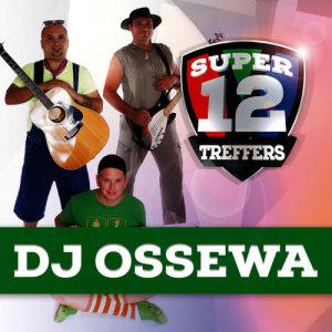 Album Super 12 Treffers from DJ Ossewa