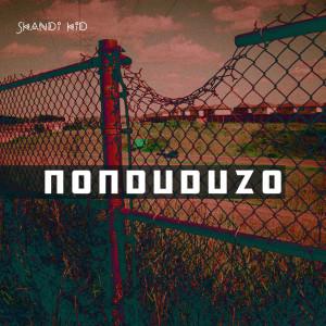 Album Nonduduzo from Skandi Kid