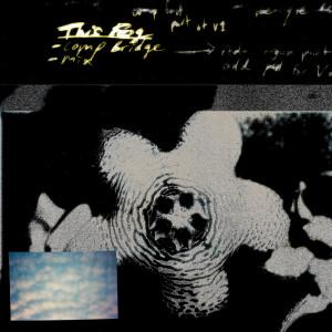 Album This Fog from Wet