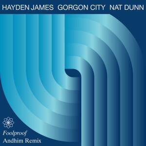 Album Foolproof (Andhim Remix) from Gorgon City