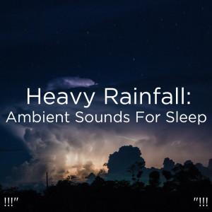 "BodyHI的專輯!!!"" Heavy Rainfall: Ambient Sounds For Sleep ""!!!"