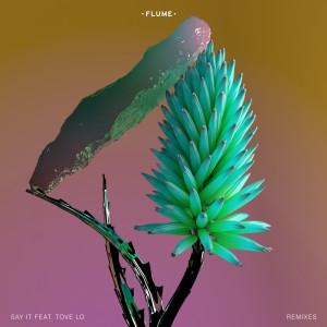 Flume的專輯Say It (Remixes) (Explicit)
