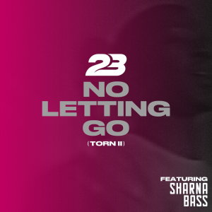 Album No Letting Go (Torn 2) from 23 Unofficial