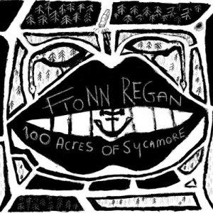 Fionn Regan的專輯100 Acres Of Sycamore