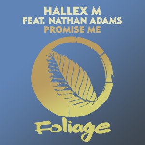 Album Promise Me from Nathan Adams