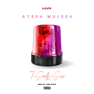 Album Ayeeh Wuleeh (Explicit) from T Smallz Suso