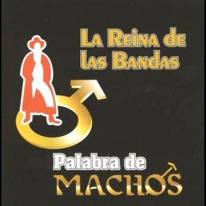 Album Palabra de machos from Banda Machos