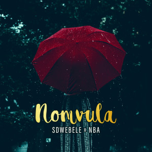 Album Nomvula from NBA