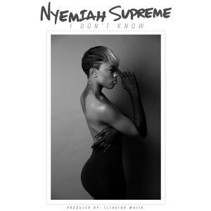Album I Don't Know from Nyemiah Supreme