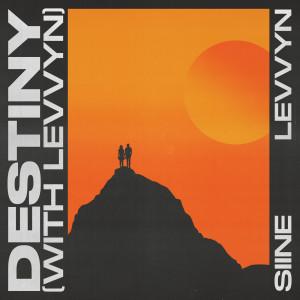 Album Destiny from Siine