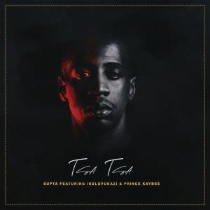 Album Tsa Tsa from Prince Kaybee