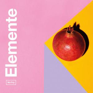 Album Elemente from MoTrip