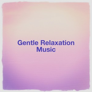 Best Relaxation Music的專輯Gentle Relaxation Music