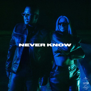 Album Never Know from Shirin David