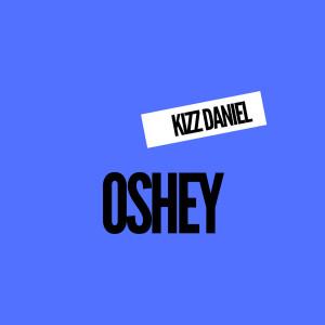 Album Burn from Kizz Daniel