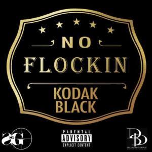 Listen to No Flockin' (Explicit) song with lyrics from Kodak Black