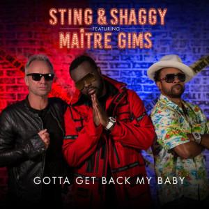 Sting的專輯Gotta Get Back My Baby