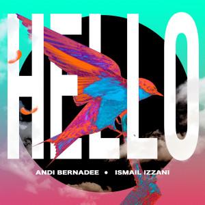 Album Hello from Andi Bernadee