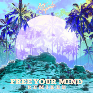 Big Gigantic的專輯Free Your Mind Remixed