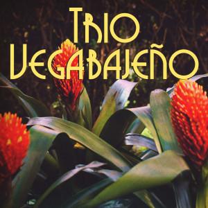 Album Trio Vegabajeño from Trio Vegabajeno