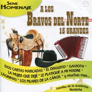 Album A los Bravos del Norte 15 Grandes from Estrellas De La Academia