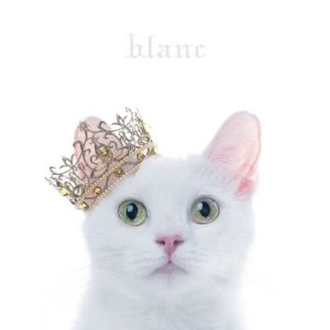 Aimer的專輯Best Selection Blanc