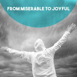 Album From Miserable to Joyful from Moscow RTV Large Symphony Orchestra