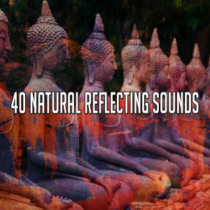 Yoga Music的專輯40 Natural Reflecting Sounds
