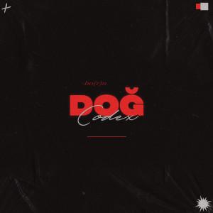 Album Doğ (Explicit) from Codex