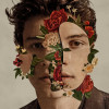 Download Lagu Shawn Mendes - Youth