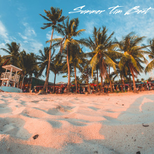 Album Summer Tin Beat from David