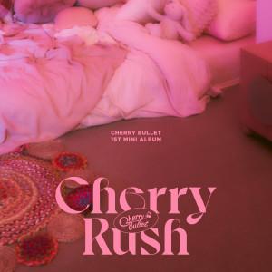 Cherry Rush dari 체리블렛