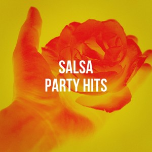 Album Salsa Party Hits from Salsa All Stars