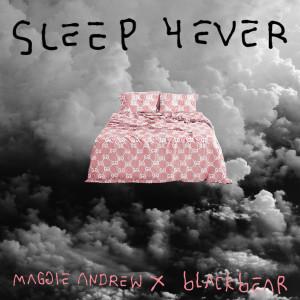 Album Sleep 4ever (Explicit) from Blackbear