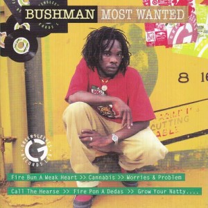 Album Most Wanted from Bushman
