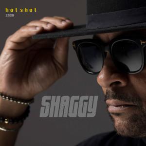 Shaggy的專輯Angel (Hot Shot 2020)