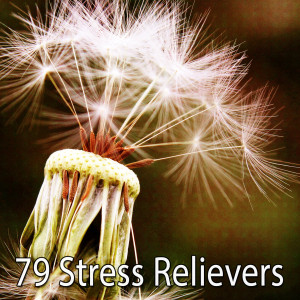 Album 79 Stress Relievers from Classical Study Music