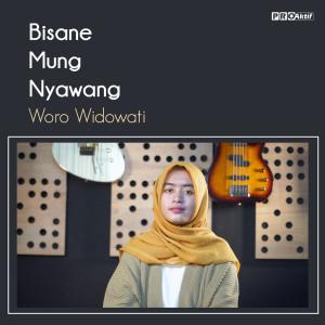Bisane Mung Nyawang dari Woro Widowati