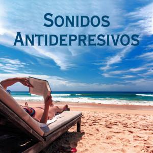 Album Sonidos Antidepresivos from Academia de Relajación Profunda