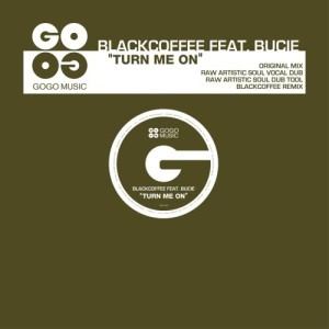Listen to Turn Me On song with lyrics from Black Coffee